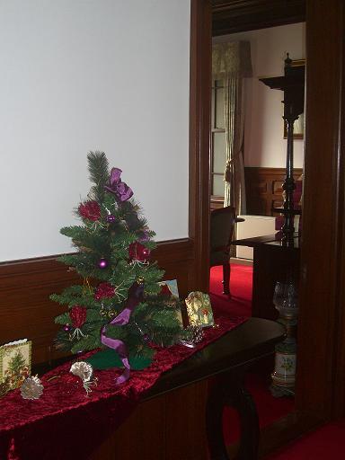 舞子クリスマス 061a.JPG