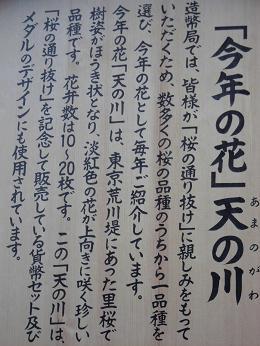 造幣局通り抜け 008a.JPG